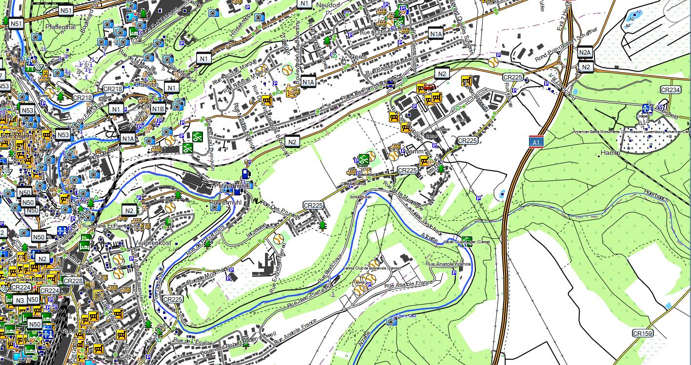 CARTE TOPO MAP GARMIN LUXEMBOURG